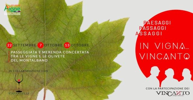 cover_vigna_vincanto