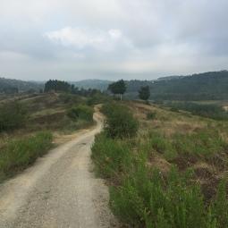 Sentiero verso Toiano
