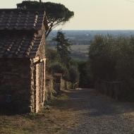 Vista di Pisa sulla strada del ritorno