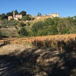Villa Saletta in lontananza